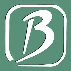 Lernstudio B online
